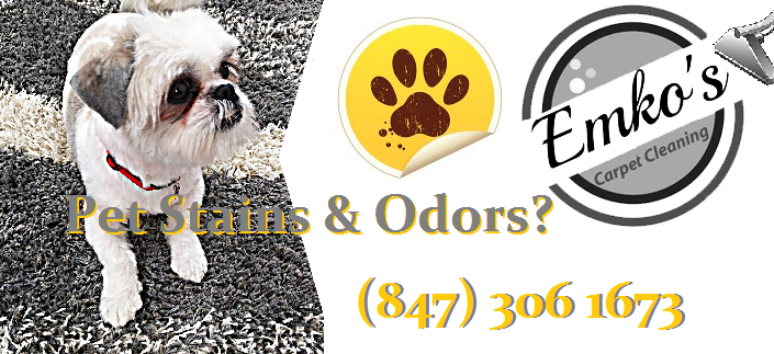 pet odor and stain removal bartlett illinois